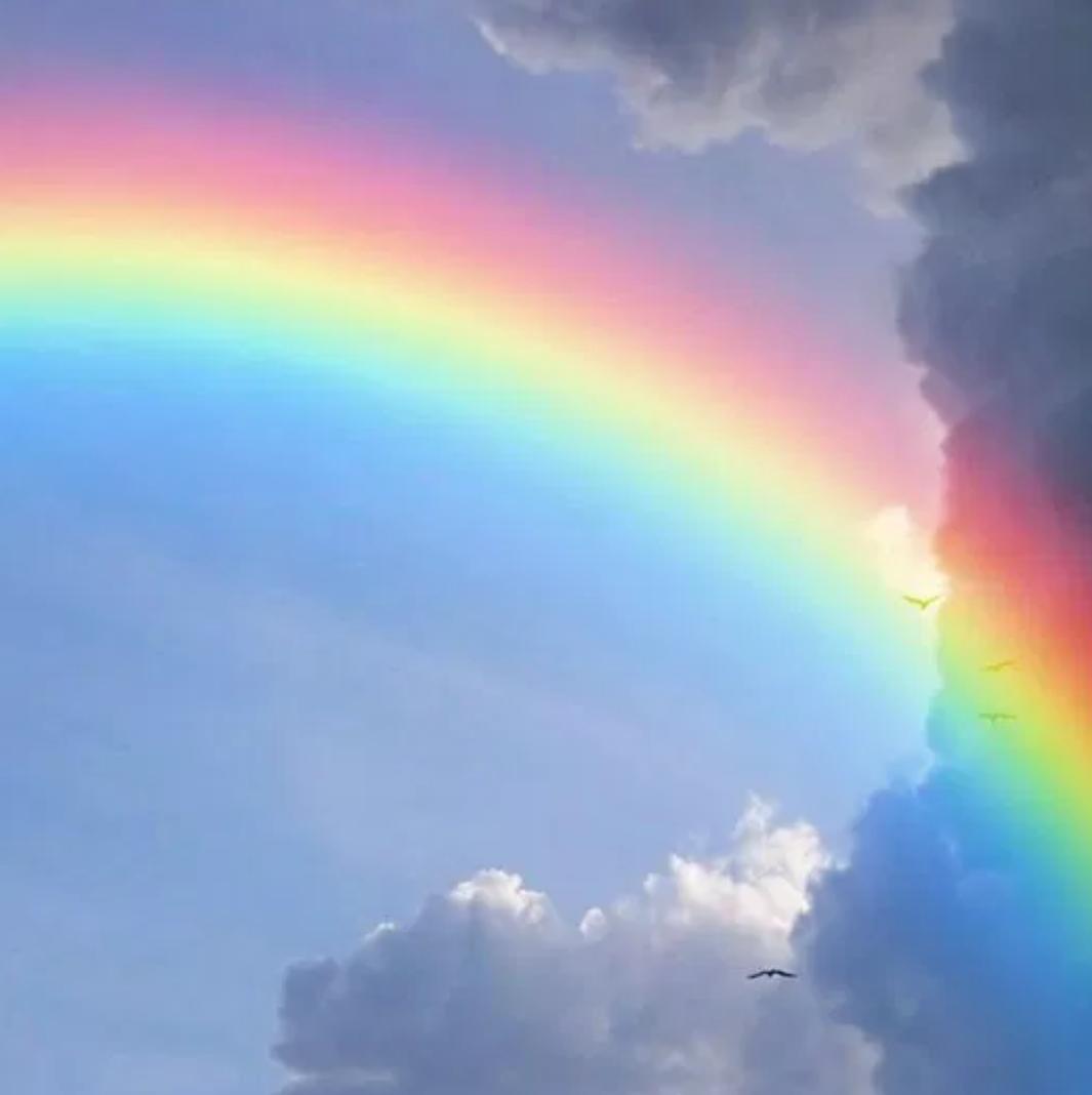 春雨後的彩虹